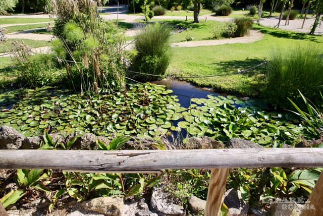 Parque dos Monges6